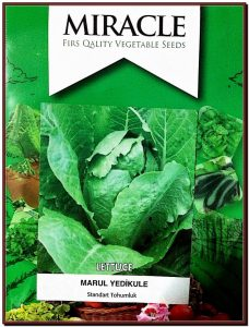 Miracle Geniş Yapraklı Yedikule Marul Tohumu