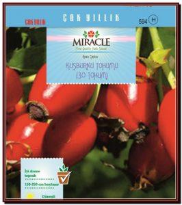 Miracle Kuşburnu Tohumu